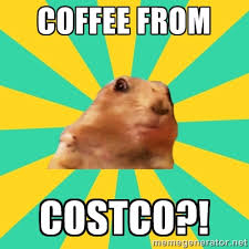 Dramatic Squirrel Meme - is costco coffee any good we bravely discover frugalwoods