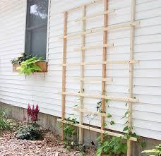 Trellis Garden Ideas 19 Awesome Diy Trellis Ideas For Your Garden