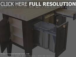 the modern rules of trash bin storage kitchen
