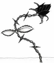 designs for barbed wire tattoos that showcase inner strength