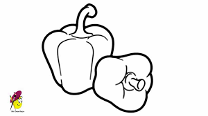 capsicum how to draw capsicum fruits and vegetables youtube