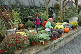 Fall Plants For Vegetable Garden by Garden Design Garden Design With Growing Fall Vegetables In South