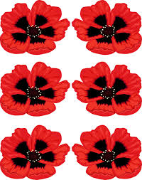veterans day poppy clipart clipartxtras