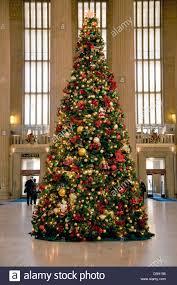 christmas tree at 30th street train station philadelphia pa