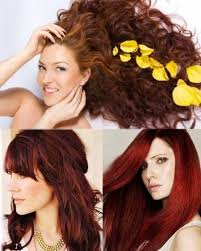 the 25 best henna hair dyes ideas on pinterest natural hair