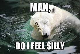 Silly Meme - man do i feel silly embarrassed polar bear quickmeme