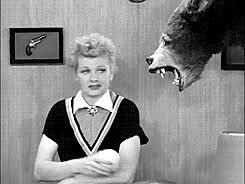 gif my gifs black and white tv lucille ball i love lucy desi arnaz