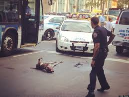 Nypd Business Cards Nypd Officers Shoot And Kill Dog On East Village Street Photo