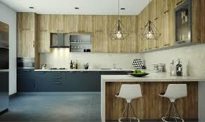 Ivory White Kitchen Cabinets Cabinet Benjamin Moore Ivory White Kitchen Cabinet