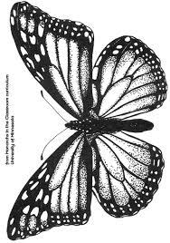 27 images of monarch template eucotech com