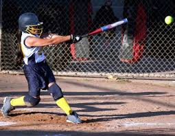 best fastpitch softball bat 19 best fastpitch softball bats images on best