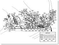 diagram electrical wiring wiring diagram reference