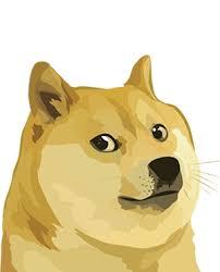 Dogecoin Meme - dogecoin