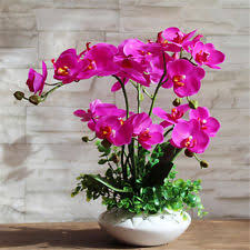 Fake Orchids Silk Orchids Floral Decor Ebay