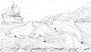 dolphin coloring pages pdf coloring pages of dolphins coloring coloring pages dolphin