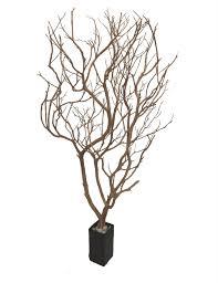 manzanita branches centerpieces manzanita branches from artisans manzanita sandblasted manzanita