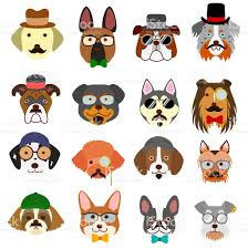australian shepherd cartoon hipster dogs faces with glasses stock vector art 639415300 istock
