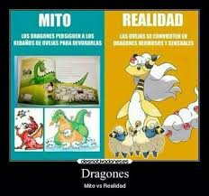 Memes De Pokemon En Espaã Ol - memes pokemon 窶 pok罠mon窶 en espa羈ol amino