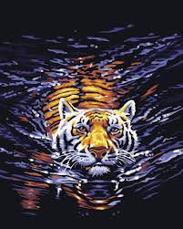 online get cheap tiger coloring picture aliexpress com alibaba