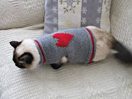 sweaters for cats 12 va va va voomy ideas for cat mousebreath