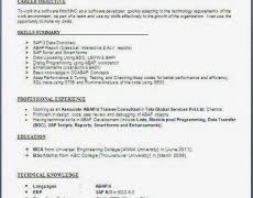 Cs Resume Template Resumes Example 19 Professional Resume Templates Updated