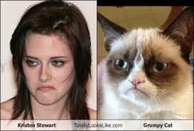Kristen Stewart Meme - kristen stewart totally looks like grumpy cat totally looks like
