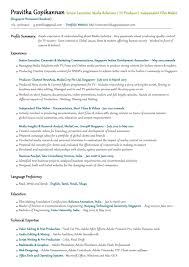 Best Resume Profile Summary by Resume Sample Interests Section Natives Co Uk Helps You Prepare A