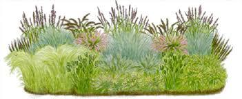 ornamental grass landscape designs prairie garden grassy