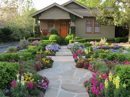 Backyard Xeriscape Ideas Zero Lawn Xeriscape Craftsman Landscape Houston By David