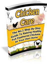 Guide To Raising Backyard Chickens by Raising Chickens Keeping Chickens How To Keep Chickens Keeping