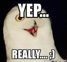 O Really Meme - yep really o rly owl meme generator