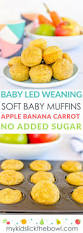 baby led weaning muffins sugar free apple banana carrot