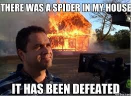 Fire Meme - kill it with fire meme 2015 jokeitup com