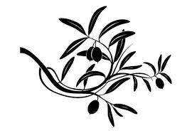 image of olive tree clipart 2136 olive tree branch drawing