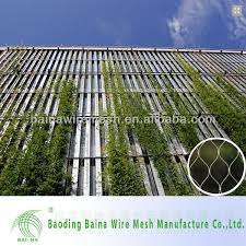 Stainless Steel Cable Trellis Inox Cable Mesh For Green Wall And Trellis Application Buy Inox