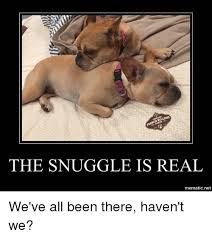 Snuggle Meme - the snuggle is real mematicnet we ve all been there haven t we