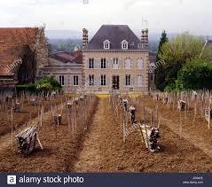 chaudes terres vineyard a tiny clos planted entirely en foule in