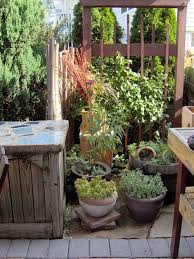 tall potted plants patio privacy u2013 outdoor design