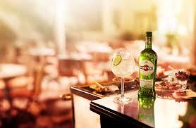 martini dry martini global martini extra dry