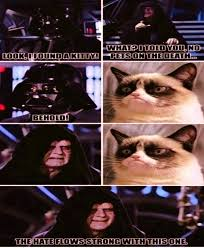 Create A Grumpy Cat Meme - jimmyfungus com the best of grumpy cat the best grumpy cat memes