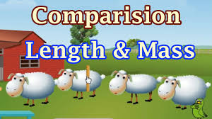 learn about length u0026 mass long u0026 short object comparision