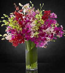 orchid bouquet luminous luxury orchid bouquet vase included