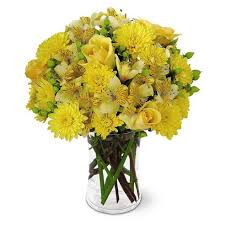 send cheap flowers yellow roses online from send flowers and buy cheap flowers flower