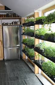creative indoor vegetable garden house design with recycled
