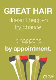 top hair salons twin cities best 25 hair sayings ideas on pinterest hairdresser sayings