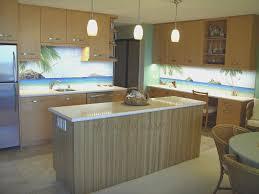 Kitchen Improvements Ideas Kitchen Simple Kitchen Cabinets Honolulu Home Design Great