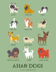 different breeds of dogs are used in several purposes for their