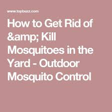 Eliminate Mosquitoes In Backyard by Best 25 How To Kill Mosquitoes Ideas On Pinterest Killing House