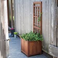 Houston Urban Gardeners - 157 best houston fruit veggie garden images on pinterest veggie