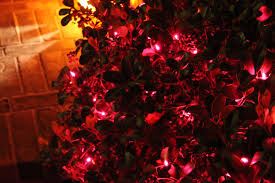 decorative halloween lights clearance best moment halloween lights